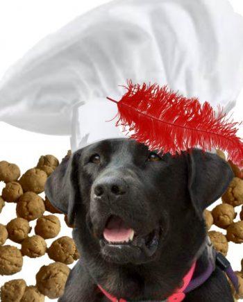 DogChef Pepernoot