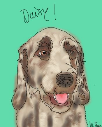 DogArt Daisy