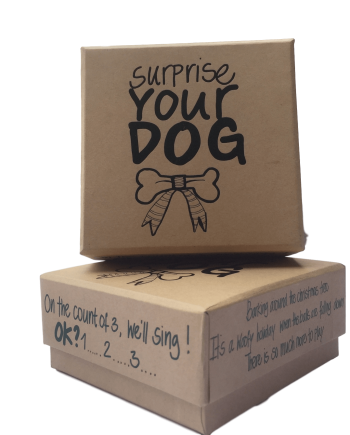 Surprise your Dog!